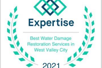 Best Water Damage Restoration Award - Expertise.com
